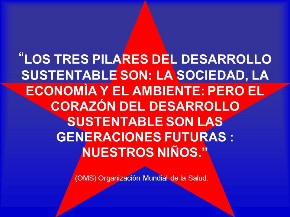 LOS TRES PILARES DEL DESARROLLO SUSTENTABLE SON: LA SOCIEDAD, LA ECONOMÌA Y EL AMBIENTE: PERO EL CORAZÓN DEL DESARROLLO SUSTENTABLE SON LAS GENERACIONES FUTURAS : NUESTROS NIÑOS.