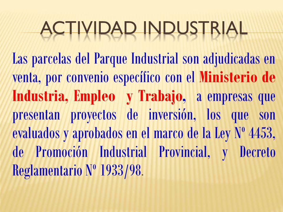 Las parcelas del Parque Industrial son adjudicadas en venta, por convenio específico con el Ministerio de Industria, Empleo y Trabajo, a empresas que