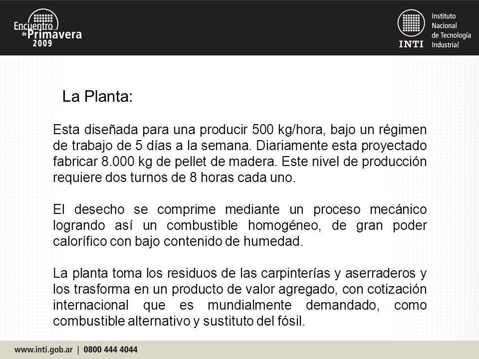 La Planta: Esta diseñada para una producir 500 kg/hora, bajo un régimen de trabajo de 5 días a la semana. Diariamente esta proyectado fabricar 8.000 k