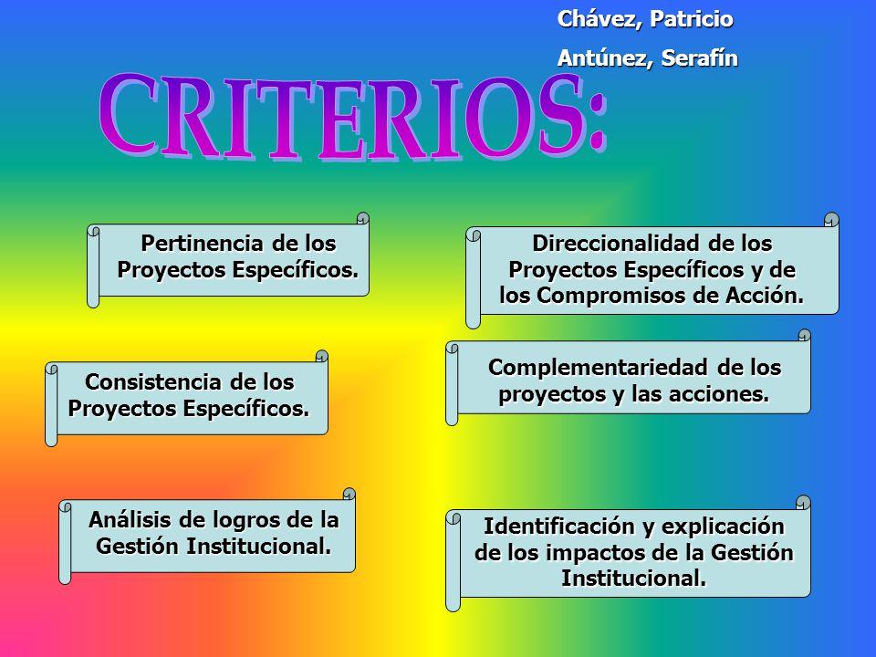 Pertinencia de los Proyectos Específicos. Direccionalidad de los Proyectos Específicos y de los Compromisos de Acción. Consistencia de los Proyectos E