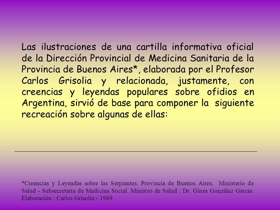 Las ilustraciones de una cartilla informativa oficial de la Dirección Provincial de Medicina Sanitaria de la Provincia de Buenos Aires*, elaborada por