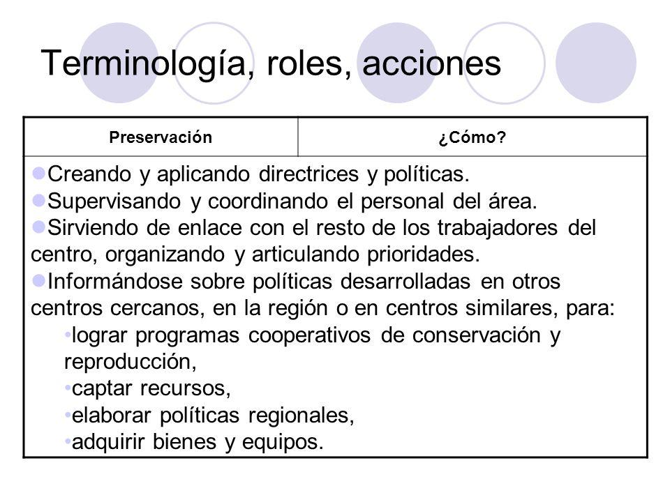 Terminología, roles, acciones Preservación¿Cómo? Creando y aplicando directrices y políticas. Supervisando y coordinando el personal del área. Sirvien