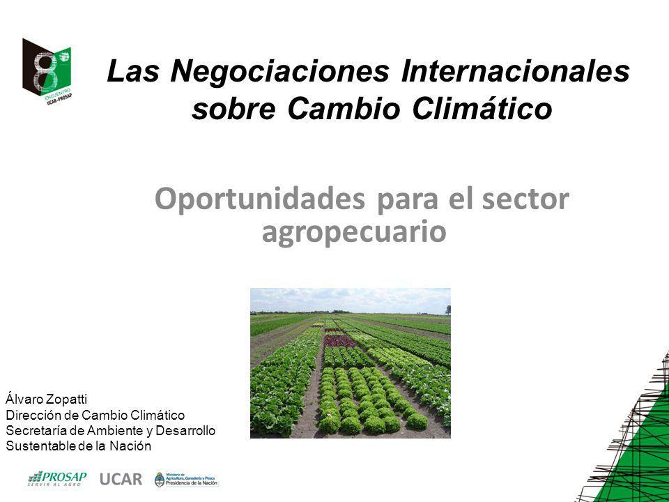 Las Negociaciones Internacionales sobre Cambio Climático Oportunidades para el sector agropecuario Álvaro Zopatti Dirección de Cambio Climático Secretaría de Ambiente y Desarrollo Sustentable de la Nación