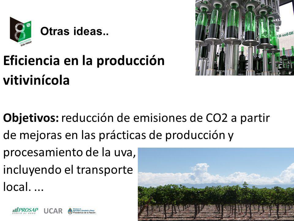 Otras ideas.. Eficiencia en la producción vitivinícola Objetivos: reducción de emisiones de CO2 a partir de mejoras en las prácticas de producción y p