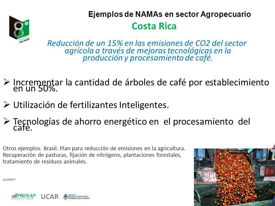Ejemplos de NAMAs en sector Agropecuario Costa Rica Reducción de un 15% en las emisiones de CO2 del sector agrícola a través de mejoras tecnológicas en la producción y procesamiento de café.