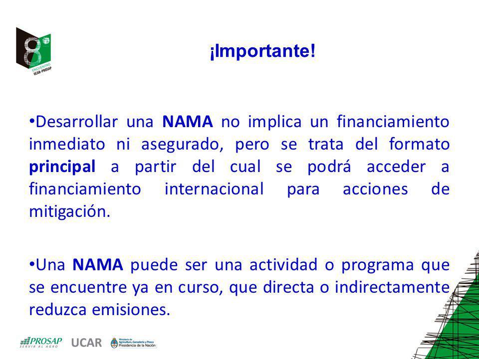 ¡Importante! Desarrollar una NAMA no implica un financiamiento inmediato ni asegurado, pero se trata del formato principal a partir del cual se podrá