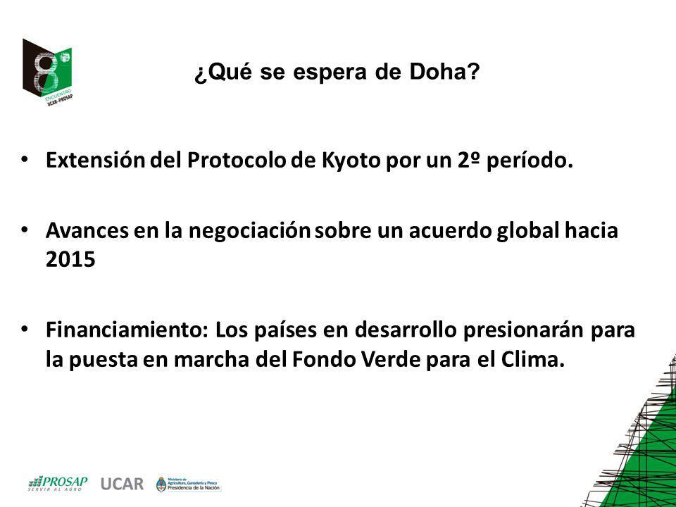 ¿Qué se espera de Doha? Extensión del Protocolo de Kyoto por un 2º período. Avances en la negociación sobre un acuerdo global hacia 2015 Financiamient