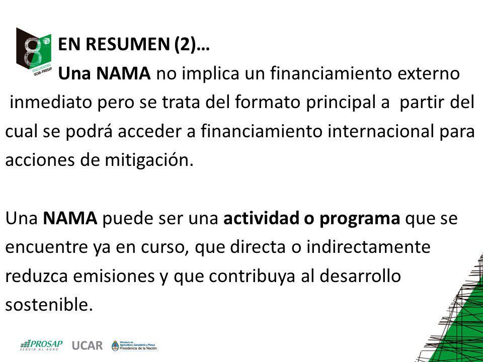 EN RESUMEN (2)… Una NAMA no implica un financiamiento externo inmediato pero se trata del formato principal a partir del cual se podrá acceder a finan