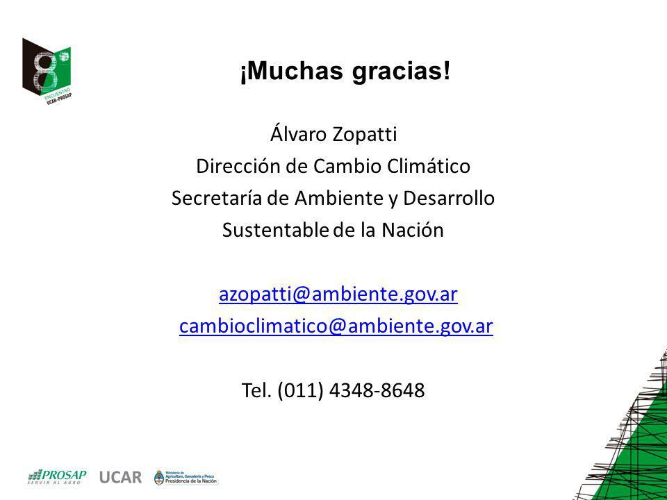 ¡Muchas gracias! Álvaro Zopatti Dirección de Cambio Climático Secretaría de Ambiente y Desarrollo Sustentable de la Nación azopatti@ambiente.gov.ar ca