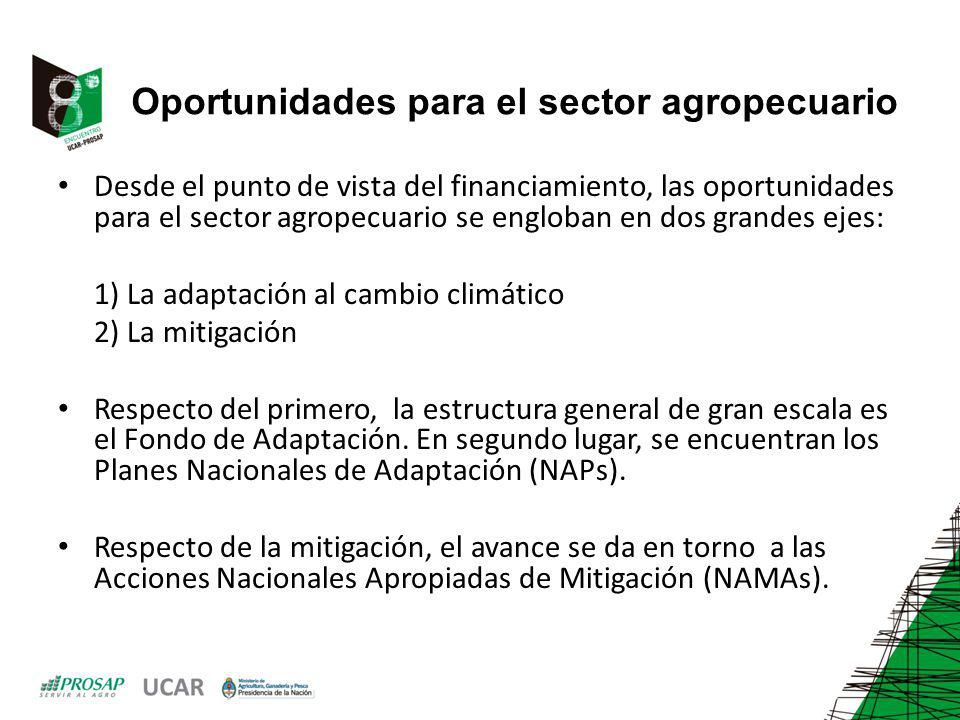 Oportunidades para el sector agropecuario Desde el punto de vista del financiamiento, las oportunidades para el sector agropecuario se engloban en dos grandes ejes: 1) La adaptación al cambio climático 2) La mitigación Respecto del primero, la estructura general de gran escala es el Fondo de Adaptación.