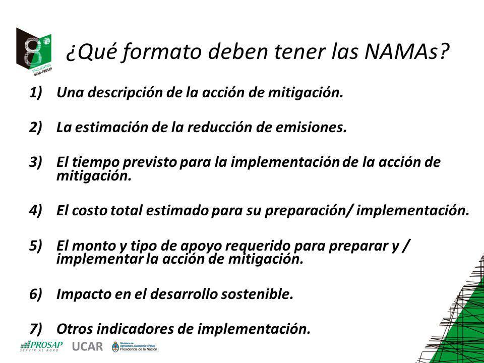 ¿Qué formato deben tener las NAMAs? 1)Una descripción de la acción de mitigación. 2)La estimación de la reducción de emisiones. 3)El tiempo previsto p