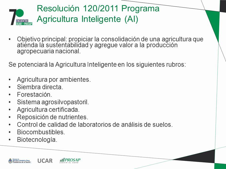 Resolución 120/2011 Programa Agricultura Inteligente (AI) Objetivo principal: propiciar la consolidación de una agricultura que atienda la sustentabilidad y agregue valor a la producción agropecuaria nacional.