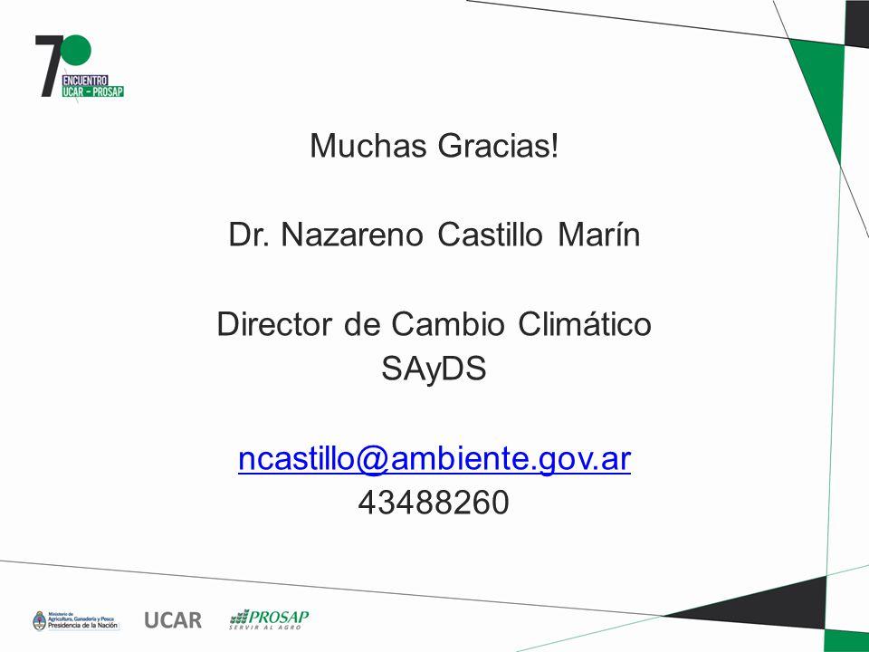 Muchas Gracias! Dr. Nazareno Castillo Marín Director de Cambio Climático SAyDS ncastillo@ambiente.gov.ar 43488260