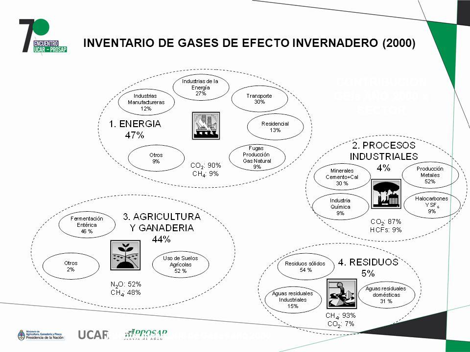 CONTRIBUCION GEIs AÑO 2000 x SECTOR Fuente: Inventario de Gases año 2000 INVENTARIO DE GASES DE EFECTO INVERNADERO (2000)