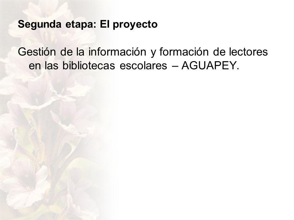 Segunda etapa: El proyecto Gestión de la información y formación de lectores en las bibliotecas escolares – AGUAPEY.
