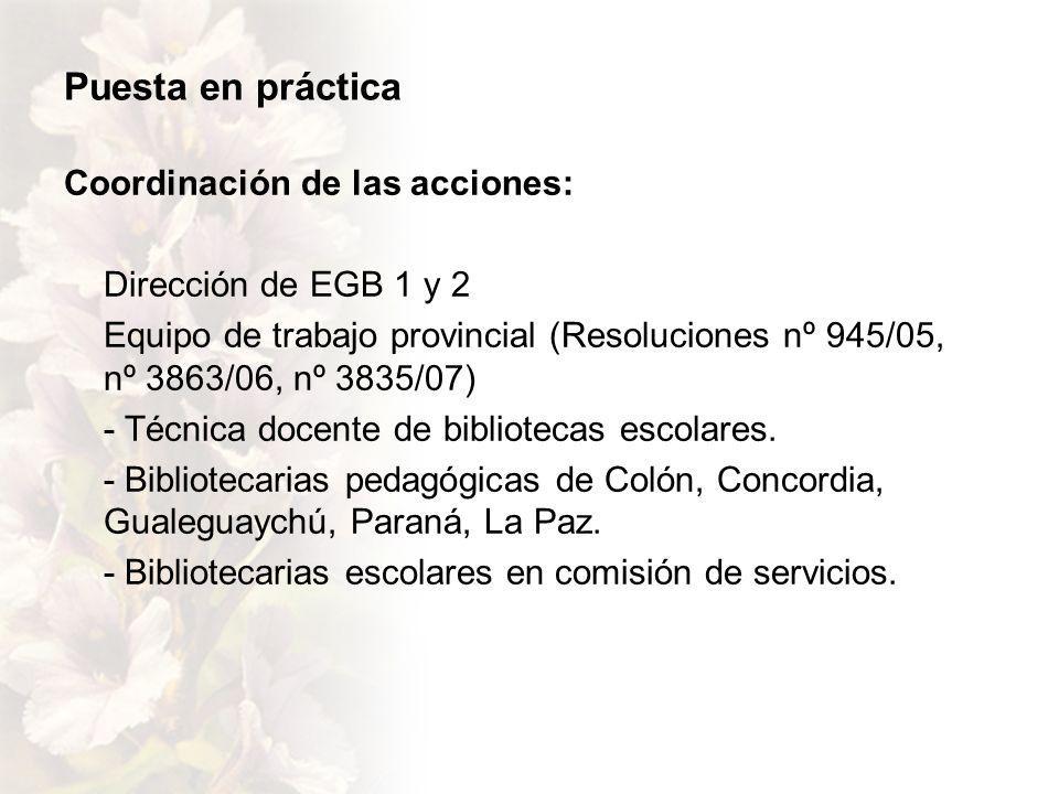 Puesta en práctica Coordinación de las acciones: Dirección de EGB 1 y 2 Equipo de trabajo provincial (Resoluciones nº 945/05, nº 3863/06, nº 3835/07) - Técnica docente de bibliotecas escolares.