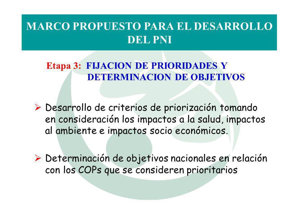 Etapa 3: FIJACION DE PRIORIDADES Y DETERMINACION DE OBJETIVOS MARCO PROPUESTO PARA EL DESARROLLO DEL PNI Desarrollo de criterios de priorización toman