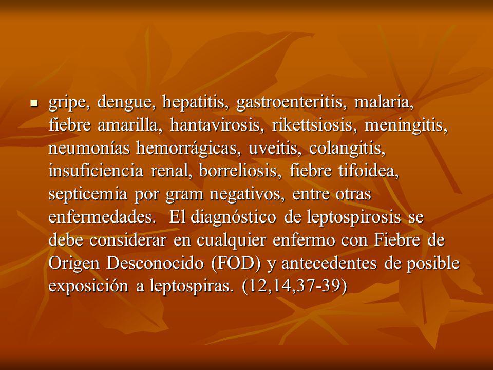 gripe, dengue, hepatitis, gastroenteritis, malaria, fiebre amarilla, hantavirosis, rikettsiosis, meningitis, neumonías hemorrágicas, uveitis, colangit