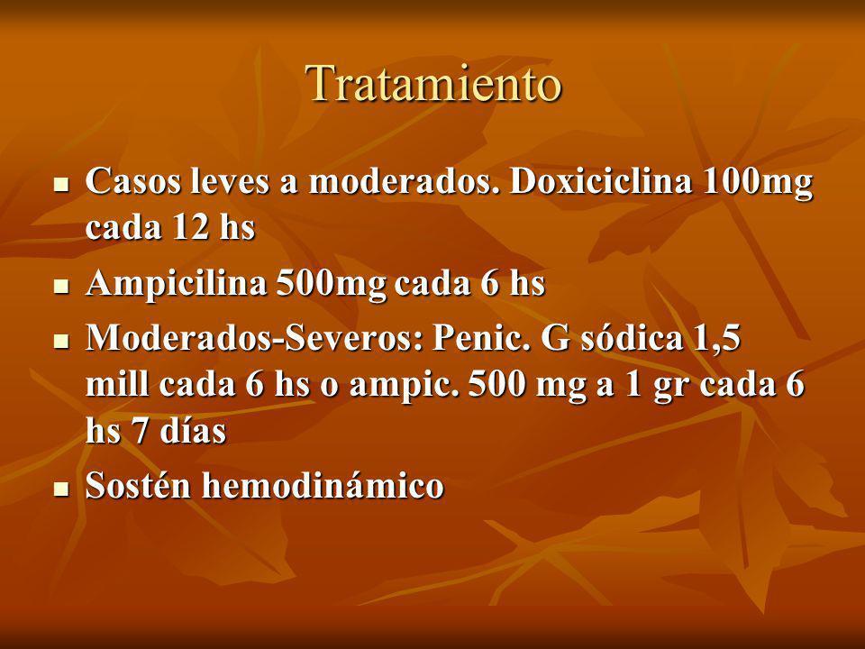 Tratamiento Casos leves a moderados. Doxiciclina 100mg cada 12 hs Casos leves a moderados. Doxiciclina 100mg cada 12 hs Ampicilina 500mg cada 6 hs Amp