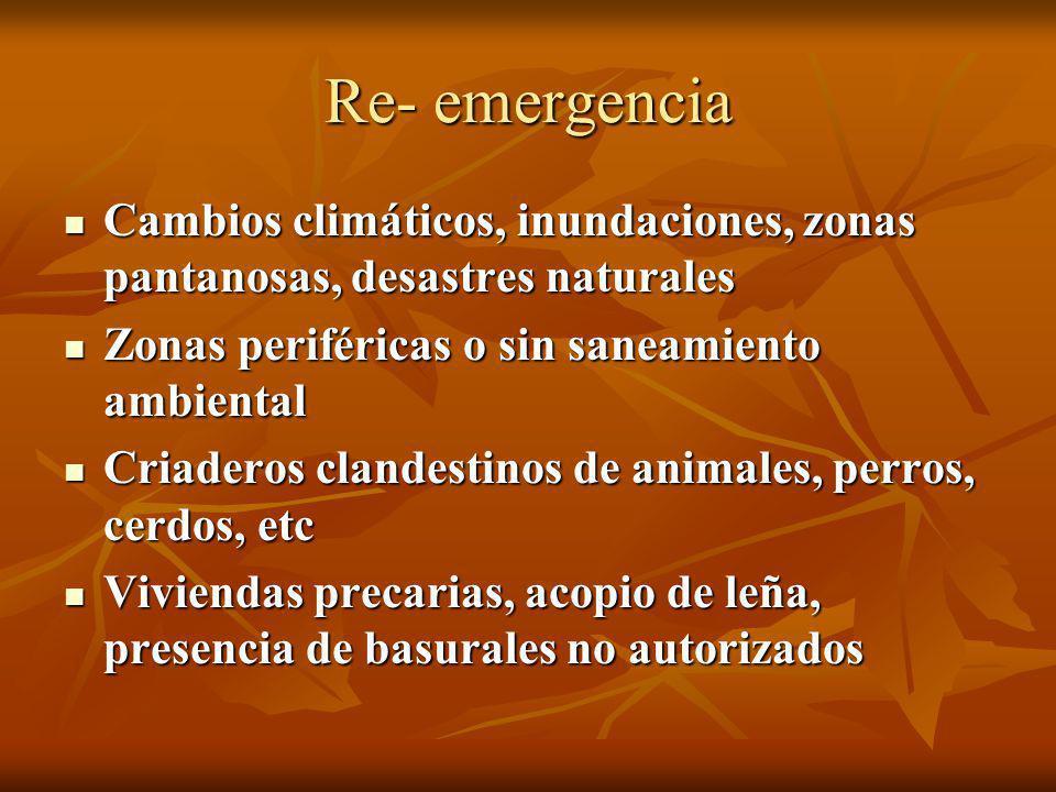 Re- emergencia Cambios climáticos, inundaciones, zonas pantanosas, desastres naturales Cambios climáticos, inundaciones, zonas pantanosas, desastres n