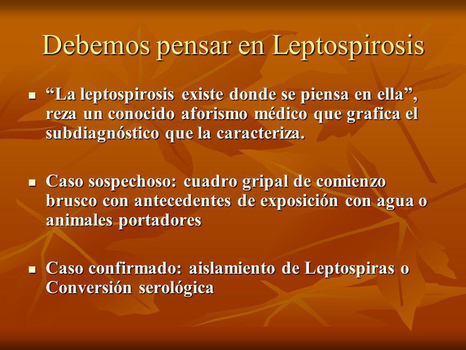 Debemos pensar en Leptospirosis La leptospirosis existe donde se piensa en ella, reza un conocido aforismo médico que grafica el subdiagnóstico que la caracteriza.