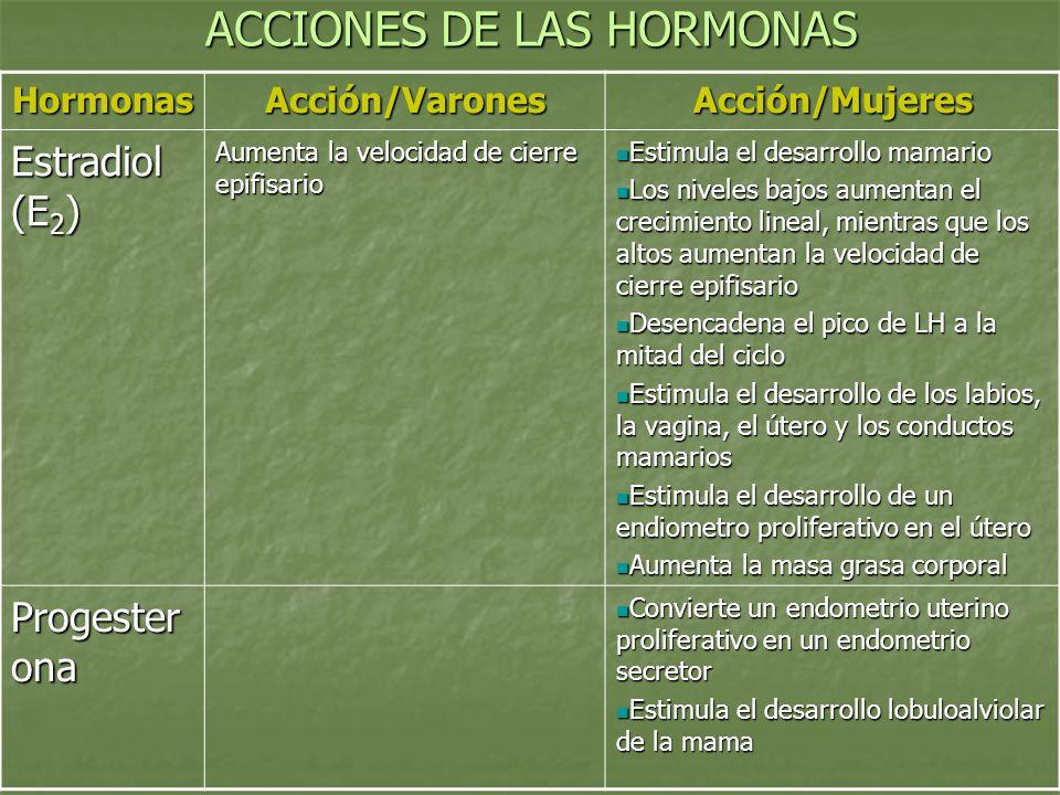 ACCIONES DE LAS HORMONAS HormonasAcción/VaronesAcción/Mujeres Estradiol (E 2 ) Aumenta la velocidad de cierre epifisario Estimula el desarrollo mamari