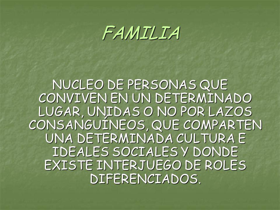 FAMILIA NUCLEO DE PERSONAS QUE CONVIVEN EN UN DETERMINADO LUGAR, UNIDAS O NO POR LAZOS CONSANGUÍNEOS, QUE COMPARTEN UNA DETERMINADA CULTURA E IDEALES