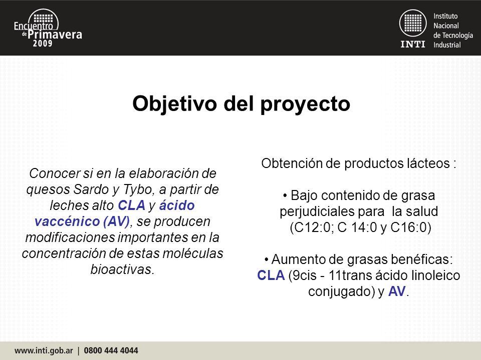 Logros 2009 del Proyecto Transferencia y apoyo de INTI a las industria quesera, para la elaboración de quesos más saludables.