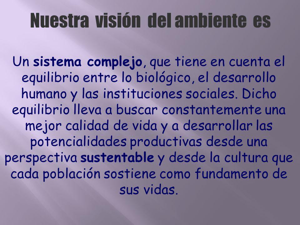 Nuestra visión del ambiente es Un sistema complejo, que tiene en cuenta el equilibrio entre lo biológico, el desarrollo humano y las instituciones soc