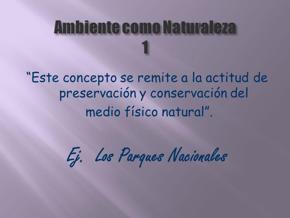 Este concepto se remite a la actitud de preservación y conservación del medio físico natural. Ej. Los Parques Nacionales