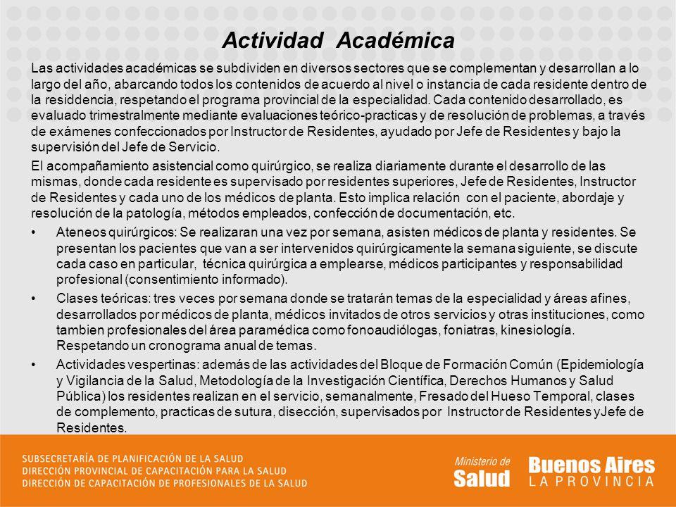 Las actividades académicas se subdividen en diversos sectores que se complementan y desarrollan a lo largo del año, abarcando todos los contenidos de