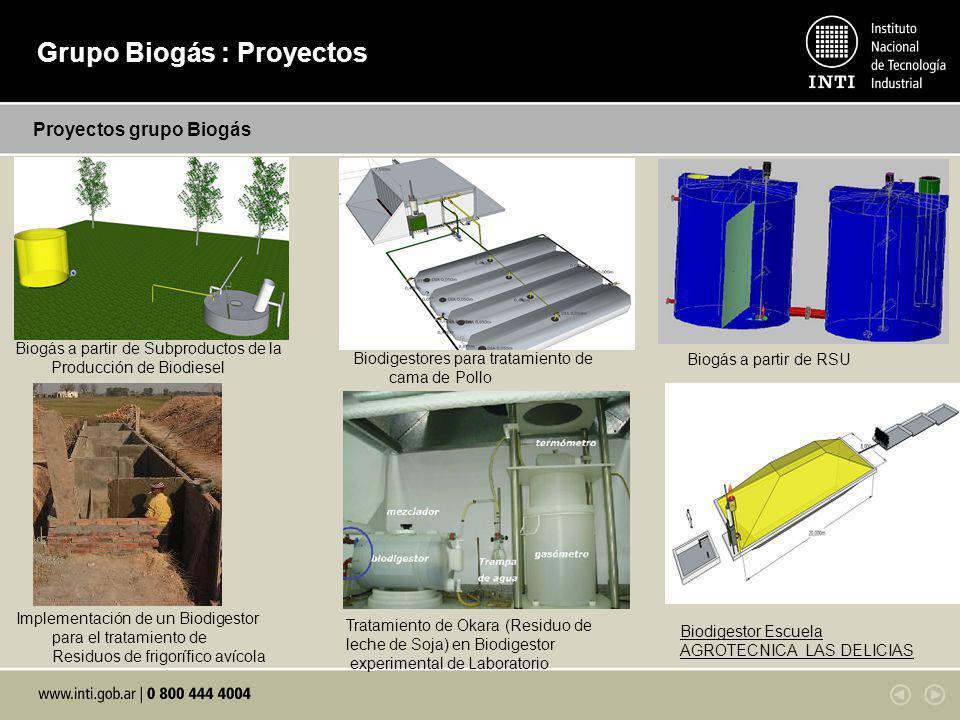 Sustratos de alimentación diaria al biodigestor:Calidad y cantidad del biogás producido: Proyectos grupo Biogás Biogás a partir de Subproductos de la