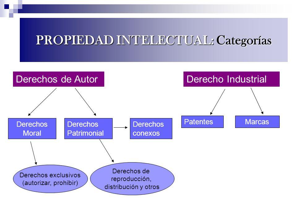 Derechos exclusivos (autorizar, prohibir) Derechos de AutorDerecho Industrial Derechos Moral Derechos Patrimonial Derechos conexos PatentesMarcas Dere