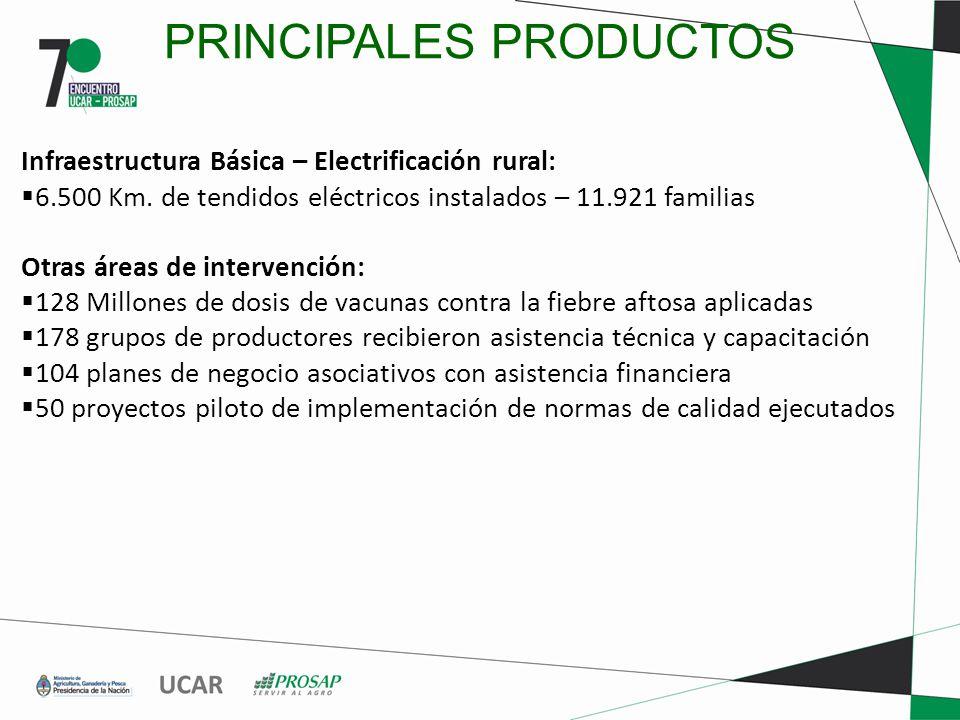 PRINCIPALES PRODUCTOS Infraestructura Básica – Electrificación rural: 6.500 Km.
