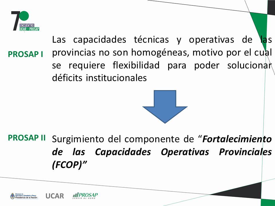 Las capacidades técnicas y operativas de las provincias no son homogéneas, motivo por el cual se requiere flexibilidad para poder solucionar déficits institucionales Surgimiento del componente de Fortalecimiento de las Capacidades Operativas Provinciales (FCOP) PROSAP I PROSAP II