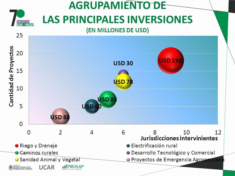 AGRUPAMIENTO DE LAS PRINCIPALES INVERSIONES (EN MILLONES DE USD)