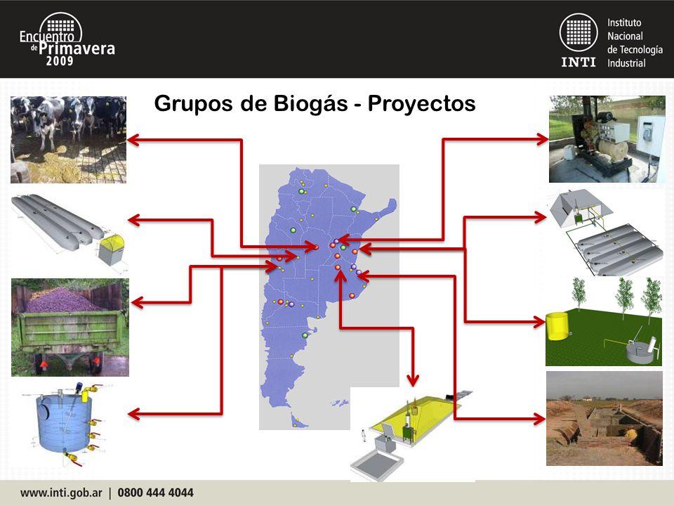Proyecto de BIODIGESTIÓN a partir de Subproductos de la producción de Biodiesel y Cosustratos(Colón,E.R.).