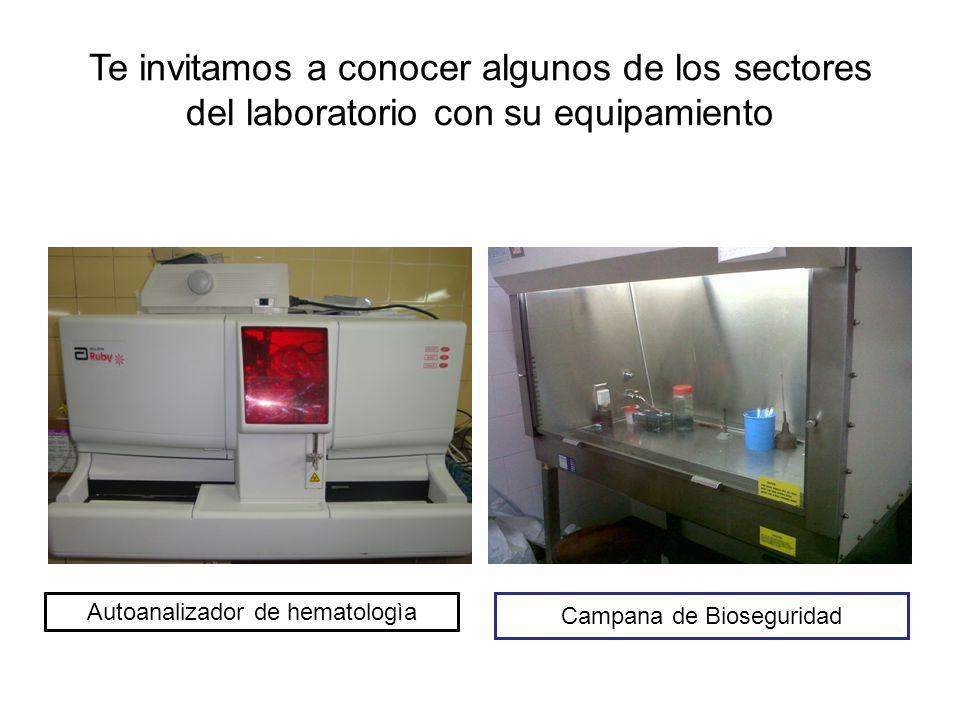 Información Complementaria Información complementariaInformación complementaria Ubicación: se encuentra a una cuadra de la estación Virreyes del FGBM.