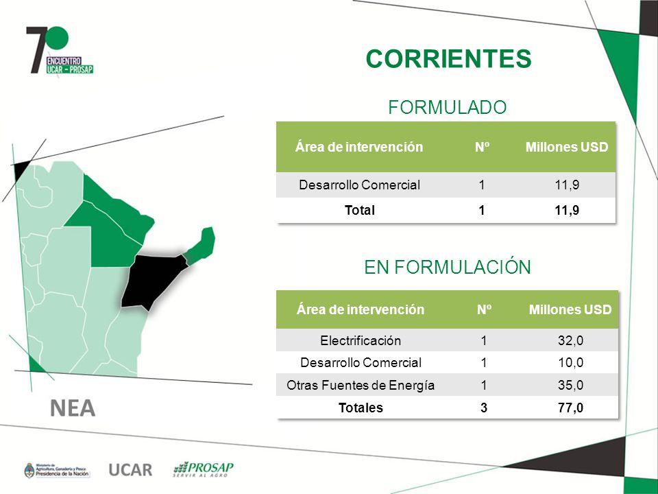 CORRIENTES EN FORMULACIÓN FORMULADO