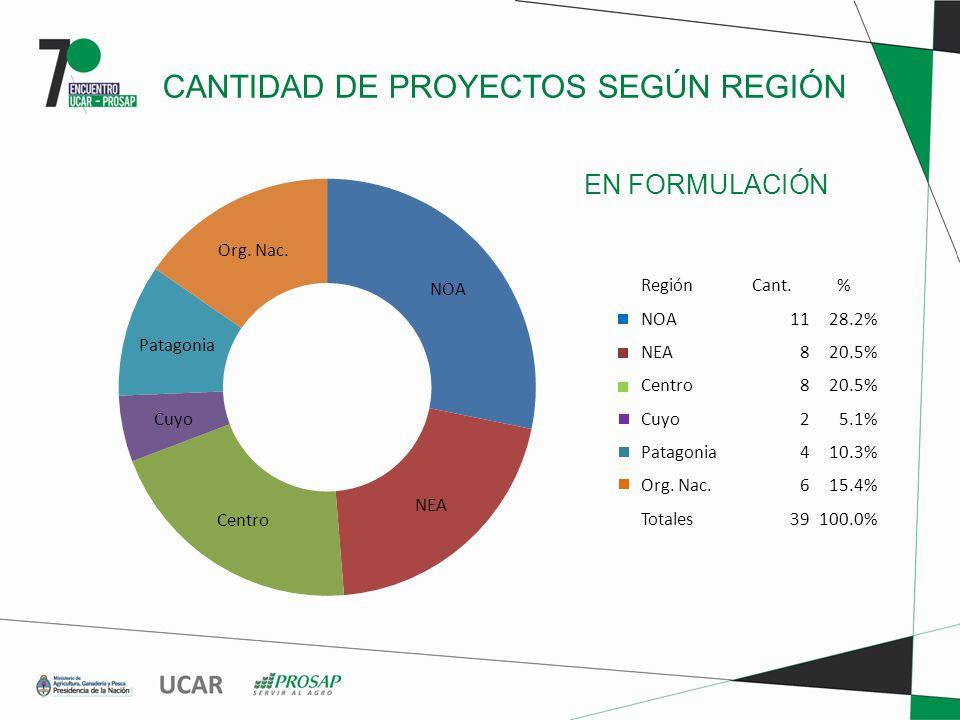 EN FORMULACIÓN CANTIDAD DE PROYECTOS SEGÚN REGIÓN RegiónCant.% NOA1128.2% NEA820.5% Centro820.5% Cuyo25.1% Patagonia410.3% Org.