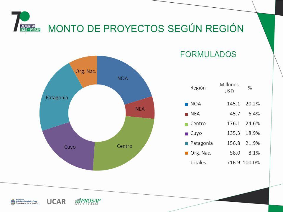 FORMULADOS MONTO DE PROYECTOS SEGÚN REGIÓN Región Millones USD % NOA145.120.2% NEA45.76.4% Centro176.124.6% Cuyo135.318.9% Patagonia156.821.9% Org.