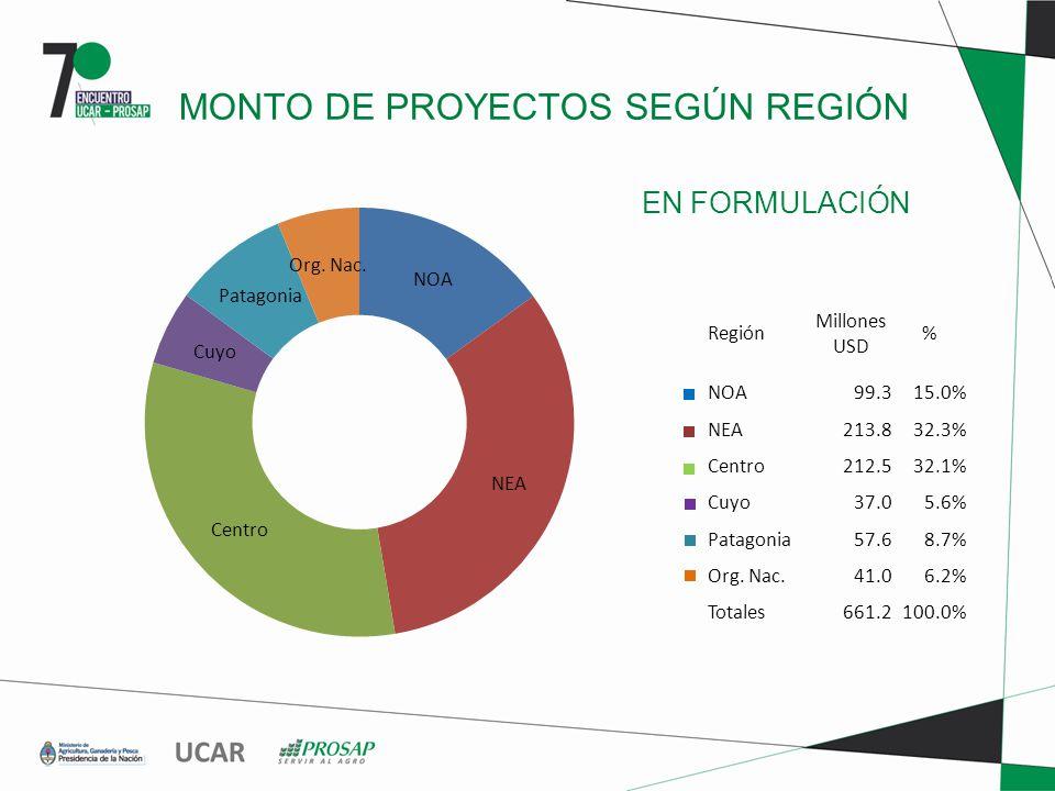 EN FORMULACIÓN MONTO DE PROYECTOS SEGÚN REGIÓN Región Millones USD % NOA99.315.0% NEA213.832.3% Centro212.532.1% Cuyo37.05.6% Patagonia57.68.7% Org.