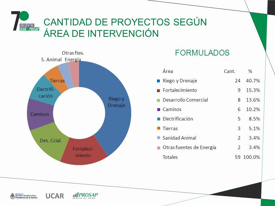 FORMULADOS CANTIDAD DE PROYECTOS SEGÚN ÁREA DE INTERVENCIÓN ÁreaCant.% Riego y Drenaje2440.7% Fortalecimiento915.3% Desarrollo Comercial813.6% Caminos610.2% Electrificación58.5% Tierras35.1% Sanidad Animal23.4% Otras fuentes de Energía23.4% Totales59100.0%