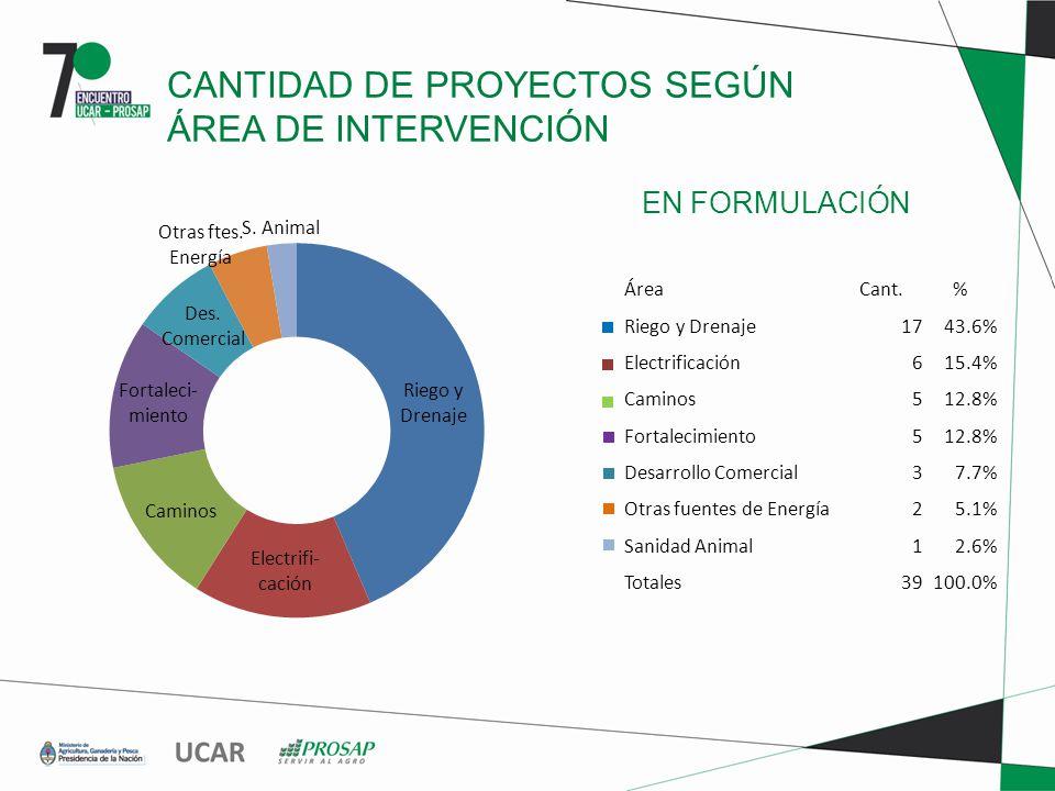 EN FORMULACIÓN CANTIDAD DE PROYECTOS SEGÚN ÁREA DE INTERVENCIÓN ÁreaCant.% Riego y Drenaje1743.6% Electrificación615.4% Caminos512.8% Fortalecimiento512.8% Desarrollo Comercial37.7% Otras fuentes de Energía25.1% Sanidad Animal12.6% Totales39100.0%