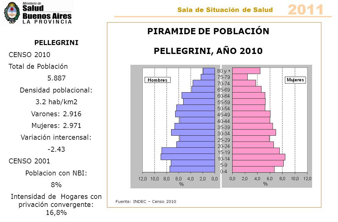 Fuente: INDEC – Censo 2010 PIRAMIDE DE POBLACIÓN PELLEGRINI, AÑO 2010 PELLEGRINI CENSO 2010 Total de Población 5.887 Densidad poblacional: 3.2 hab/km2