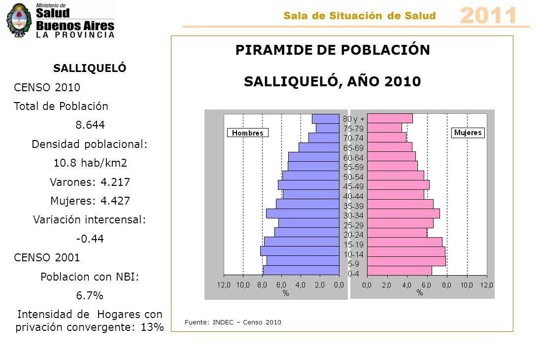 Fuente: INDEC – Censo 2010 PIRAMIDE DE POBLACIÓN SALLIQUELÓ, AÑO 2010 SALLIQUELÓ CENSO 2010 Total de Población 8.644 Densidad poblacional: 10.8 hab/km