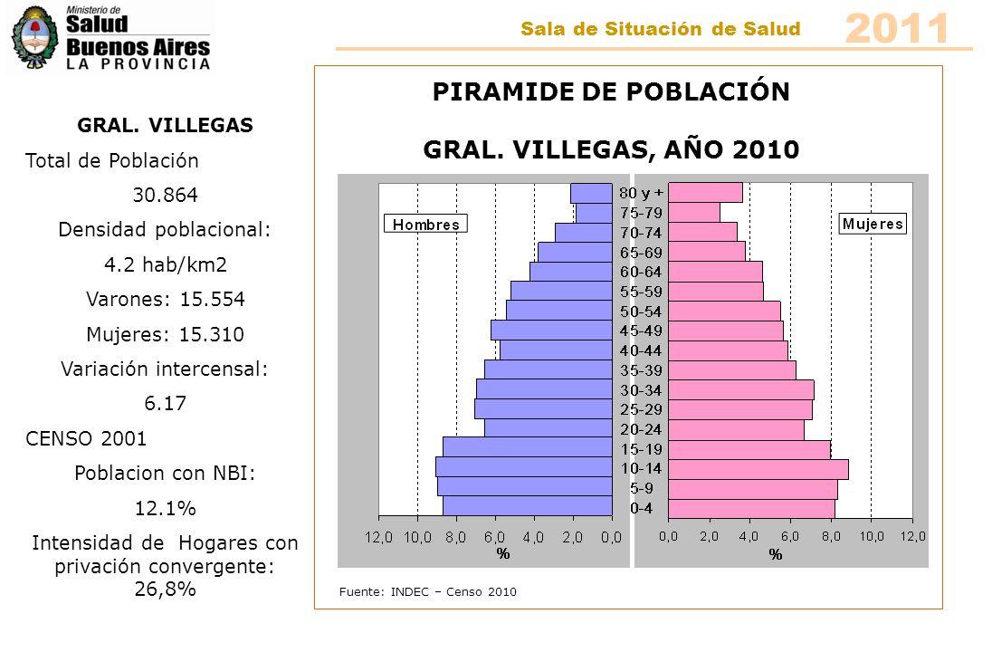 Fuente: INDEC – Censo 2010 PIRAMIDE DE POBLACIÓN GRAL. VILLEGAS, AÑO 2010 GRAL. VILLEGAS Total de Población 30.864 Densidad poblacional: 4.2 hab/km2 V