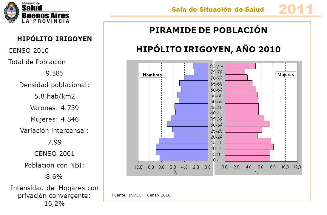 Fuente: INDEC – Censo 2010 PIRAMIDE DE POBLACIÓN HIPÓLITO IRIGOYEN, AÑO 2010 HIPÓLITO IRIGOYEN CENSO 2010 Total de Población 9.585 Densidad poblaciona