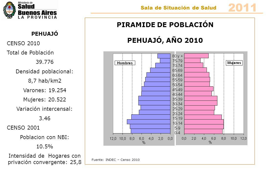 Fuente: INDEC – Censo 2010 PIRAMIDE DE POBLACIÓN PEHUAJÓ, AÑO 2010 PEHUAJÓ CENSO 2010 Total de Población 39.776 Densidad poblacional: 8,7 hab/km2 Varo