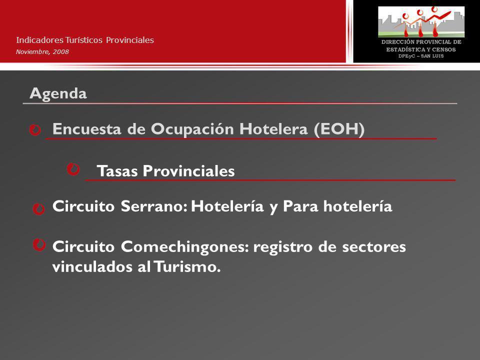Indicadores Turísticos Provinciales Noviembre, 2008 Extranjeros que pernoctaron en 21 hoteles de la ciudad de San Luis.